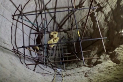 SCAFFOLDING-_CEMENT_INDUSTRY-_MAINTENANCE_AND_REPAIR